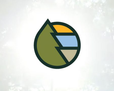 Launching a New Brand for Georgia Forestry Foundation